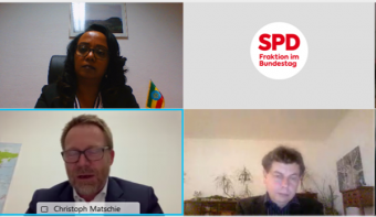 Deputy head of mission, participated in an online panel discussion on the current situation in Ethiopia