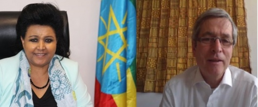 Germany reaffirms its commitment to support Ethiopia's full return to reform and development cooperation's